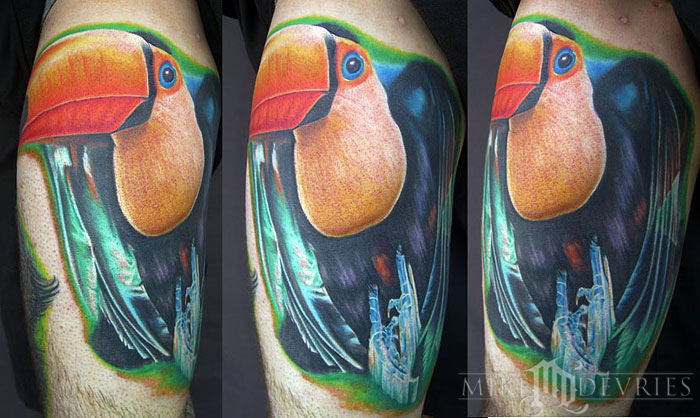 Mike DeVries - Toucan Tattoo